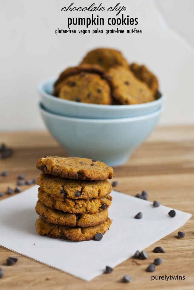 Ripped Recipes - Chocolate Chip Pumpkin Coconut Flour Cookies