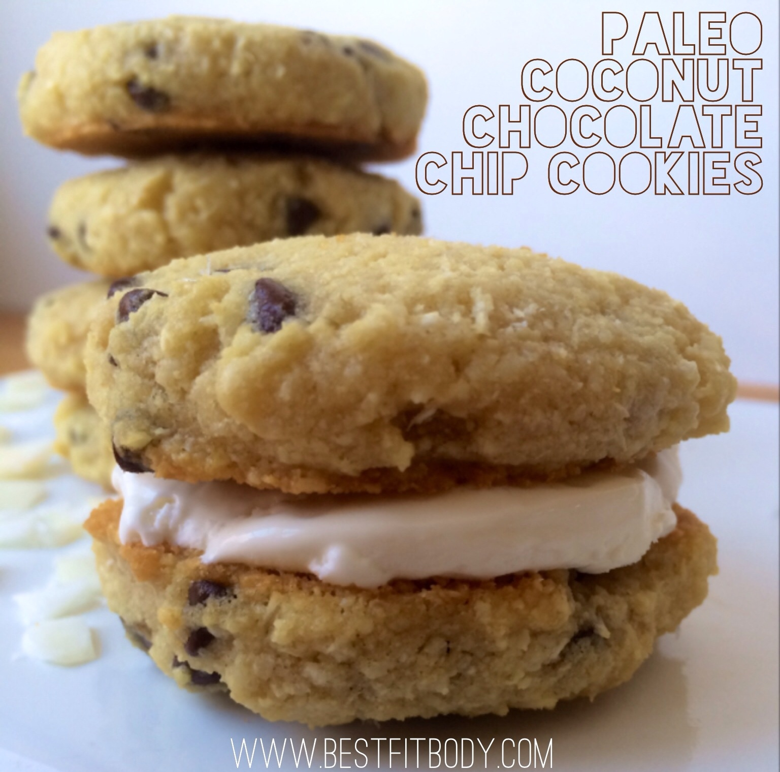 Ripped Recipes - Paleo Coconut Chocolate Chip Cookies