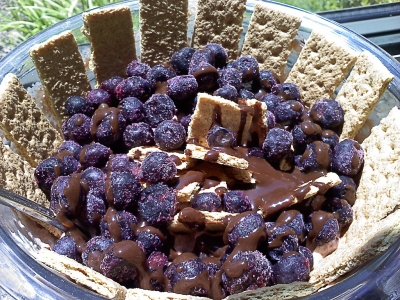 Blueberry Graham Cracker Greek Yogurt