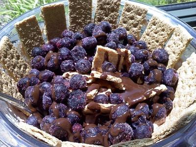 Blueberry Graham Cracker Greek Yogurt