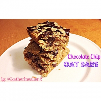 Dark Chocolate Chip Oat Bars
