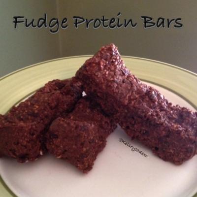 No Bake Fudge Protein Bars