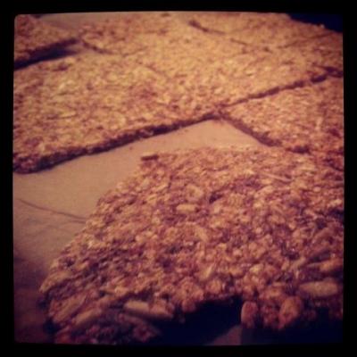 Protein Crispbread