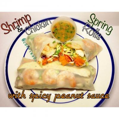 Shrimp & Chicken Spring Rolls
