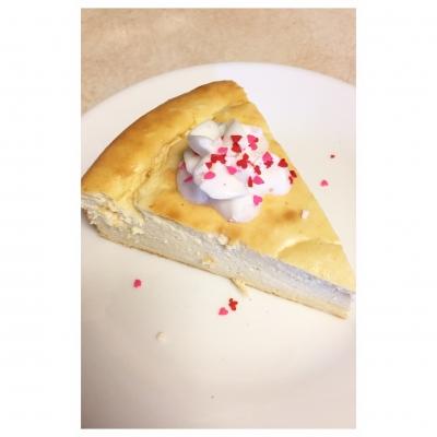 Snickerdoodle Protein Cheesecake