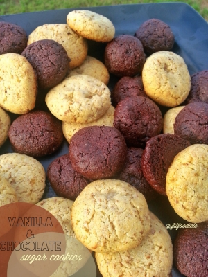 Vanilla & Chocolate Sugar Cookies