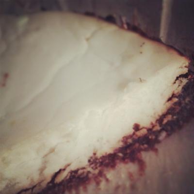 Vanilla Protein Cheesecake