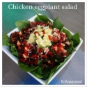 Chicken Eggplant Salad