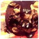 Chocolate Peanut Butter Stuffed Protein Mug Cake