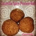 Coconilla Spice Protein Balls