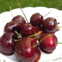 Fifteen Second Chocolate Covered Cherries