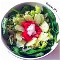 Italian Vegan Salad