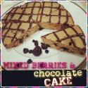 Mixed Berries & Chocolate Protein Cake