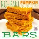No-Bake Pumpkin Coconut Bars