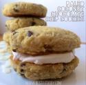 Paleo Coconut Chocolate Chip Cookies
