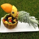 Parot Of Fruit