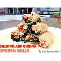 Salmon and Quinoa Spring Rolls